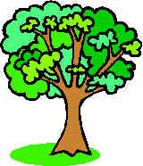 Sueño De Tres árboles